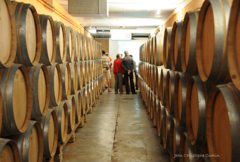 A delightful journey to the heart of the vineyards à Venterol - 5