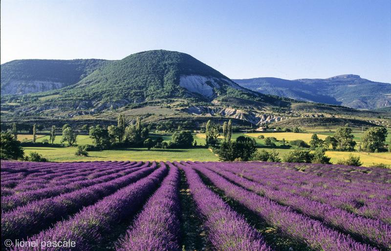 De Baronnies in de Drôme Provençale