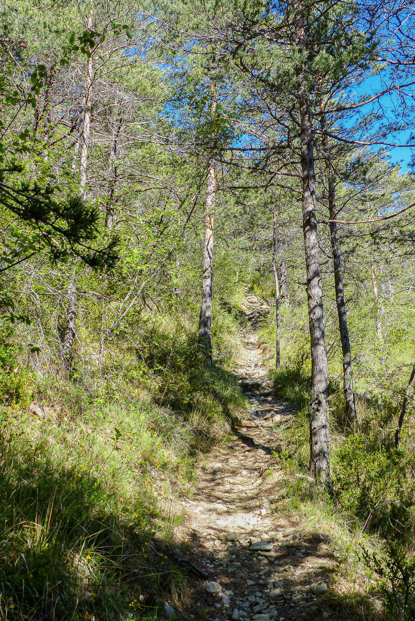 Chemin Baronnies