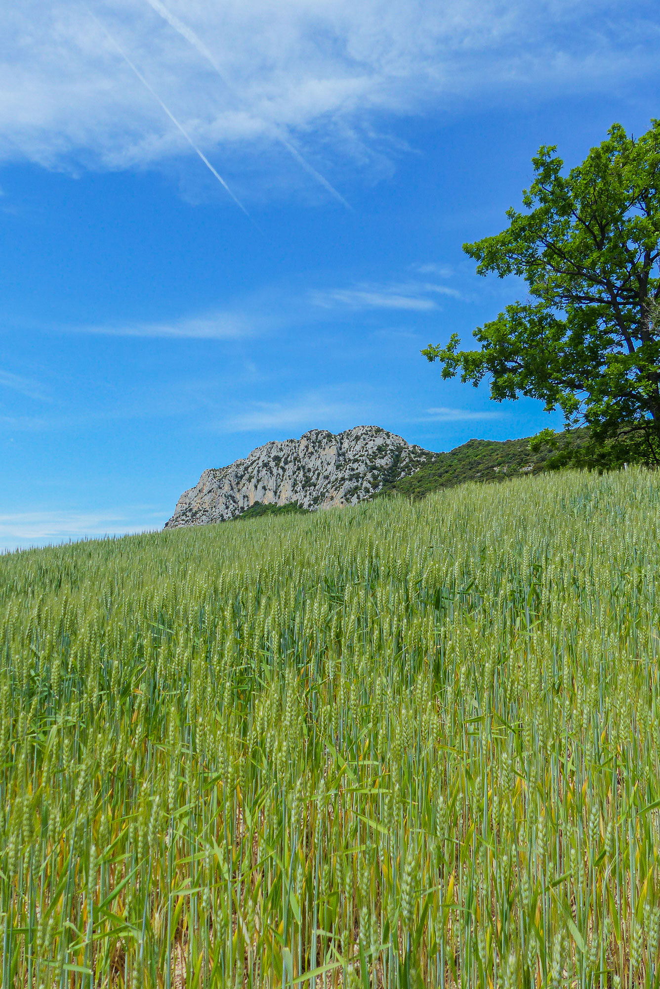 Paysages Baronnies