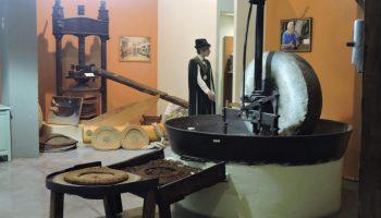 Musée de l'Olivier à Nyons
