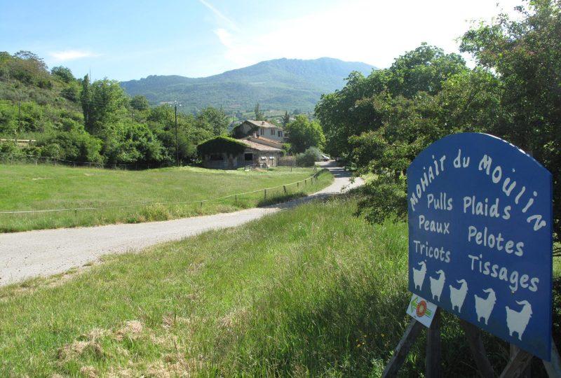 Mohair du Moulin à Saint-Sauveur-Gouvernet - 0