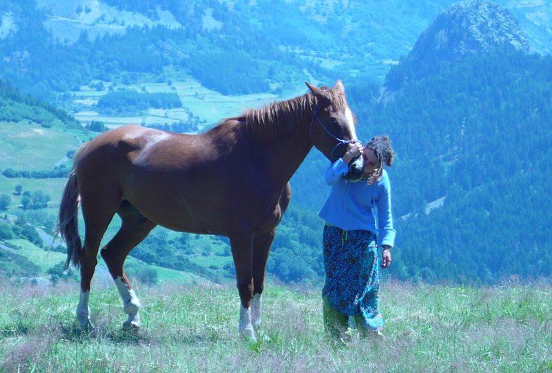 A cheval dans le Diois à Montmaur-en-Diois - 1