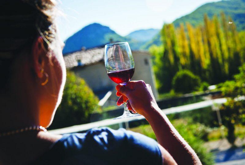 Coups de pédales dans les vignobles à Mirabel-aux-Baronnies - 1