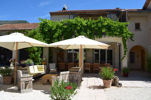 Sous l'olivier, la vigne à Condorcet - 6