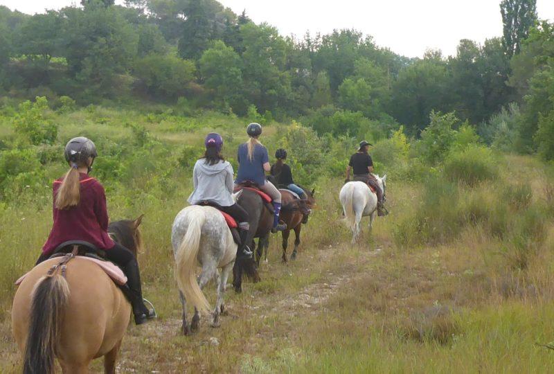 Promenade à cheval (Baladez curieux) à Buis-les-Baronnies - 0