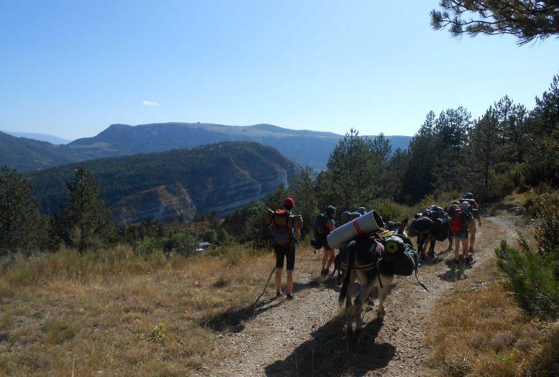Les Cols des ânes à Cornillac - 2