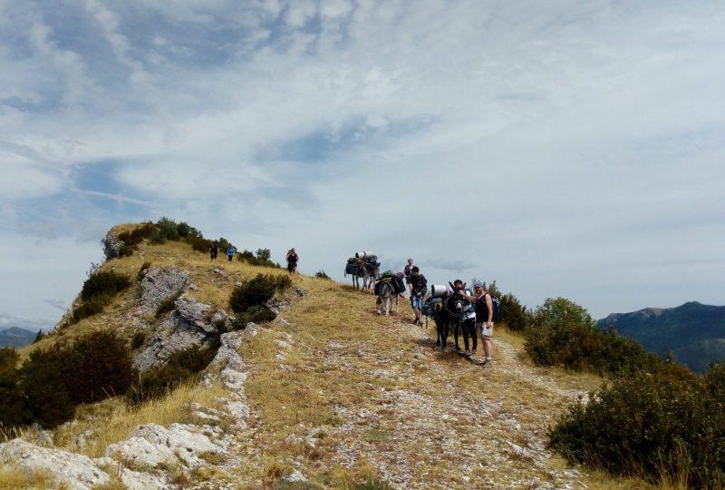 Les Cols des ânes à Cornillac - 3