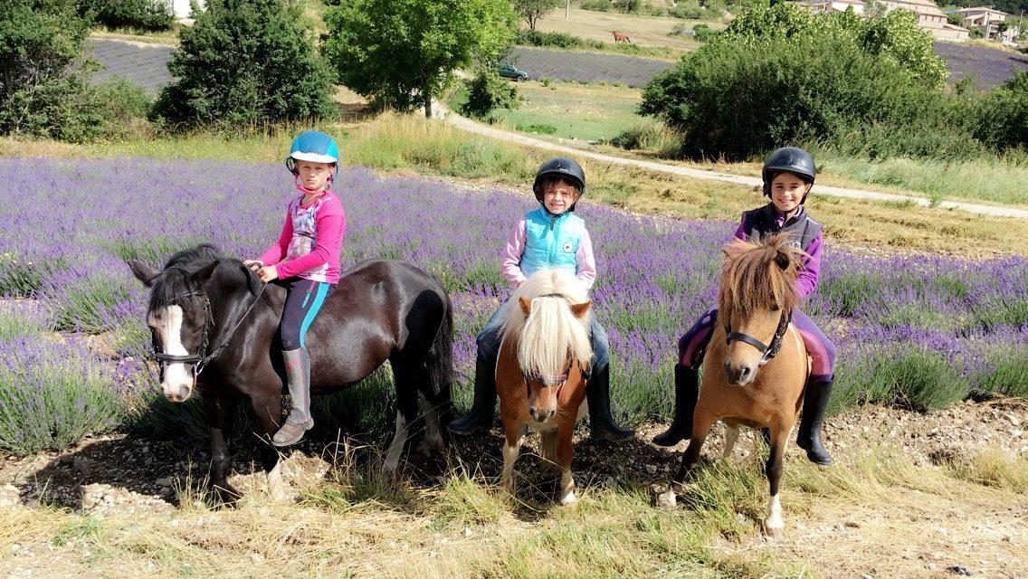 Balade à poney (Baladez curieux)
