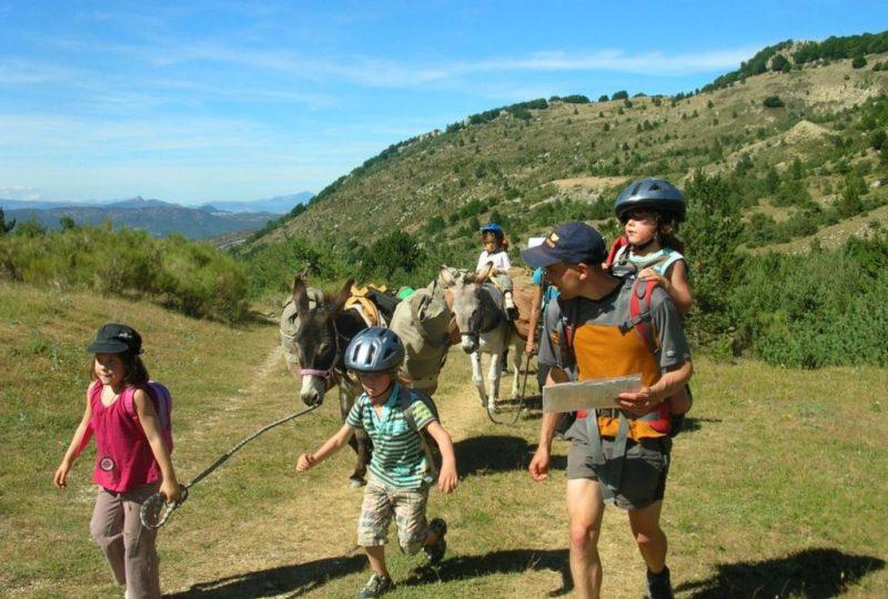 Randonnées avec les ânes à Éourres - 0