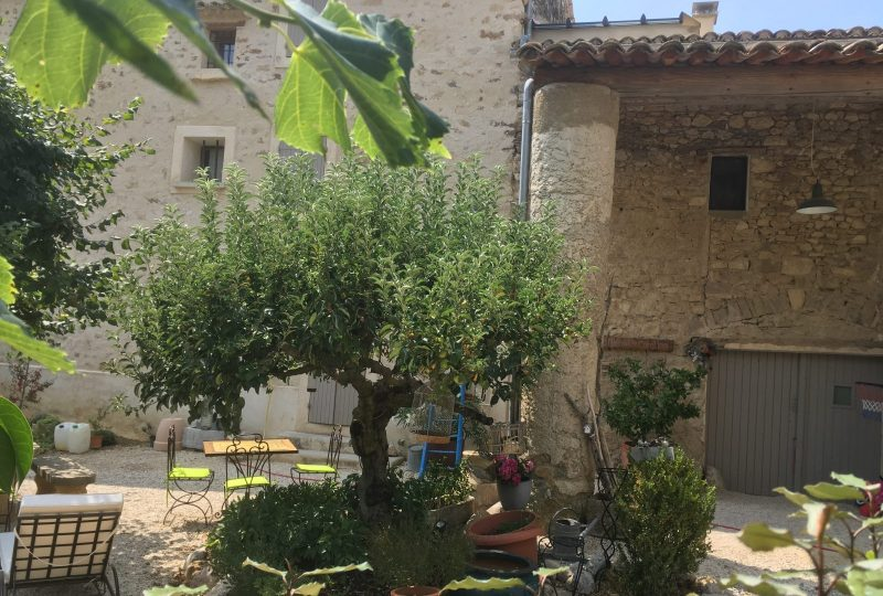Séjour «Plantes et Bien-être en Baronnies provençales» à Buis-les-Baronnies - 3