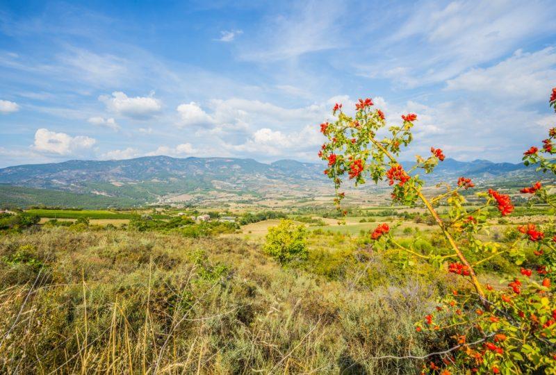 Sites & Paysages Camping l'Orée de Provence à Buis-les-Baronnies - 2