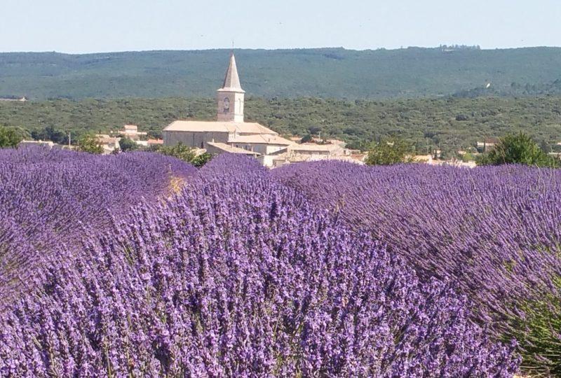 Provence Rêverie à Valréas - 1