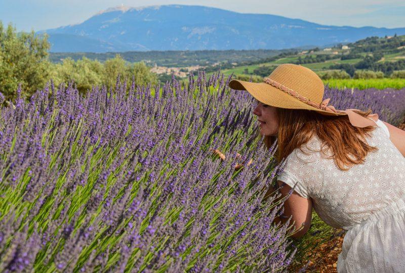 Séjour «Plantes et Bien-être en Baronnies provençales» à Buis-les-Baronnies - 0
