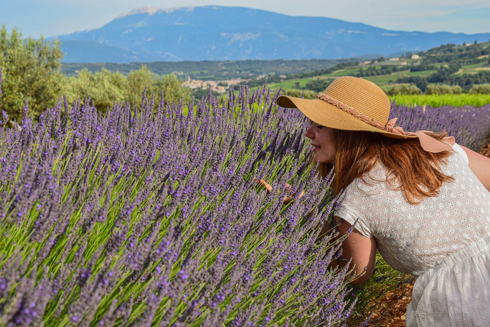 Séjour «Plantes et Bien-être en Baronnies provençales»